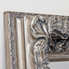 Image of Grand Silver Full Length Mirror