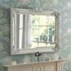 Image of White Flourish mirror