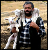 Adopt A Sheep Gift Program