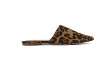 Agnetta, Cheetah