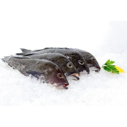 One Fresh Virginia Black Bass 3/4 Lb. Avg