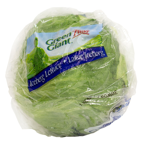 Iceberg Lettuce One Head