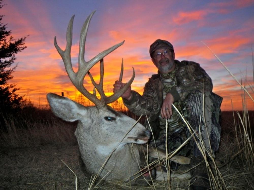 Beautiful sunset behind a trophy mule deer.