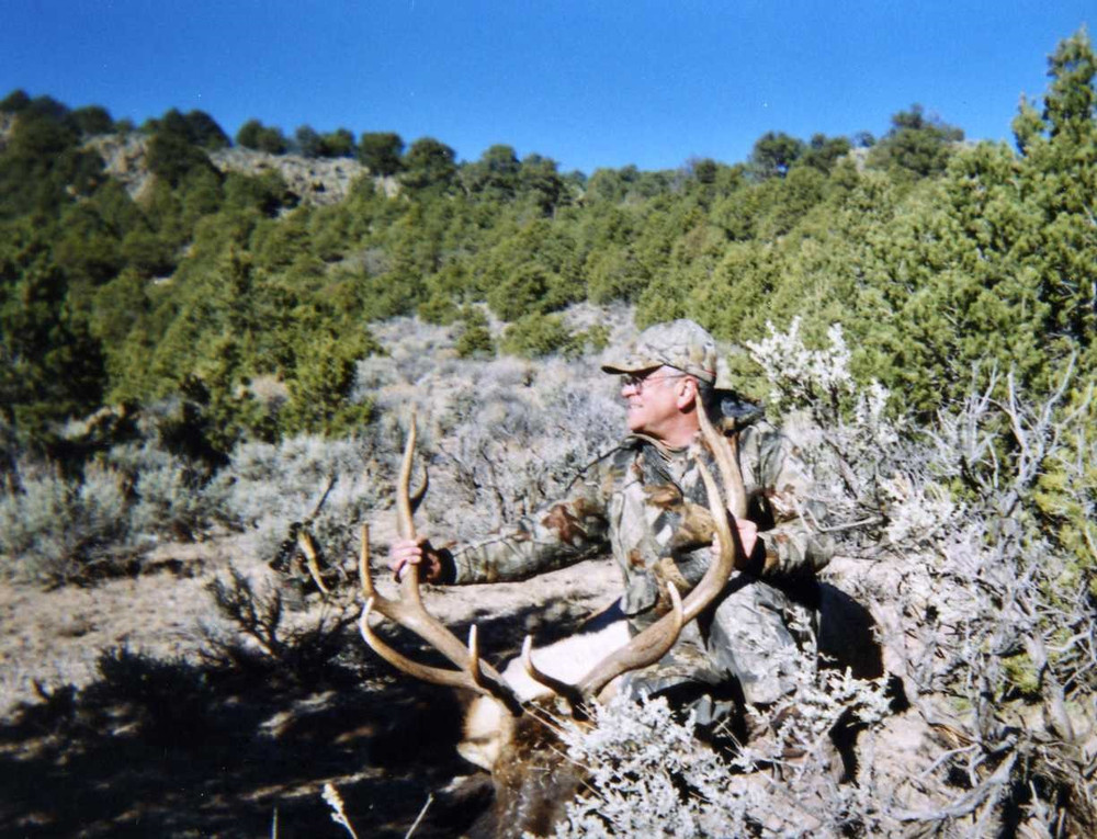 Tough location to take a bull elk even on private property.