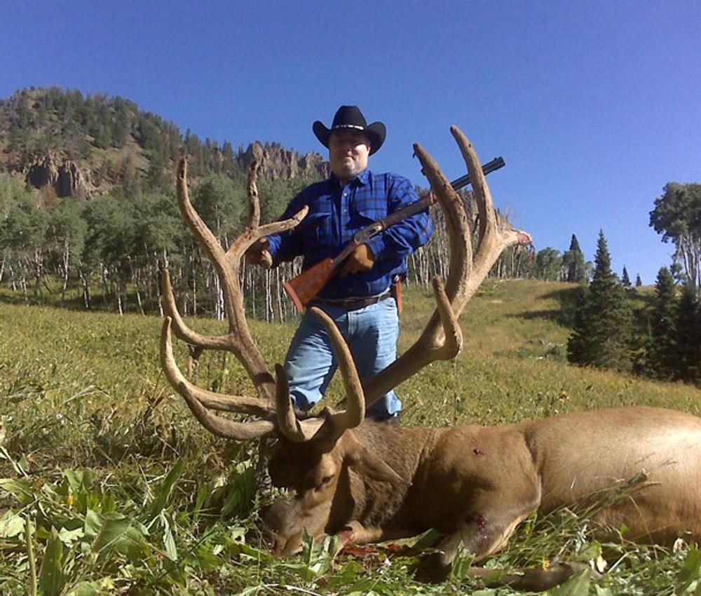 Bull elk in velvet during muzzleloader season in Colorado.