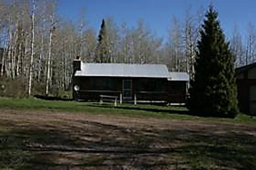 Cow elk DIY cabin on private land