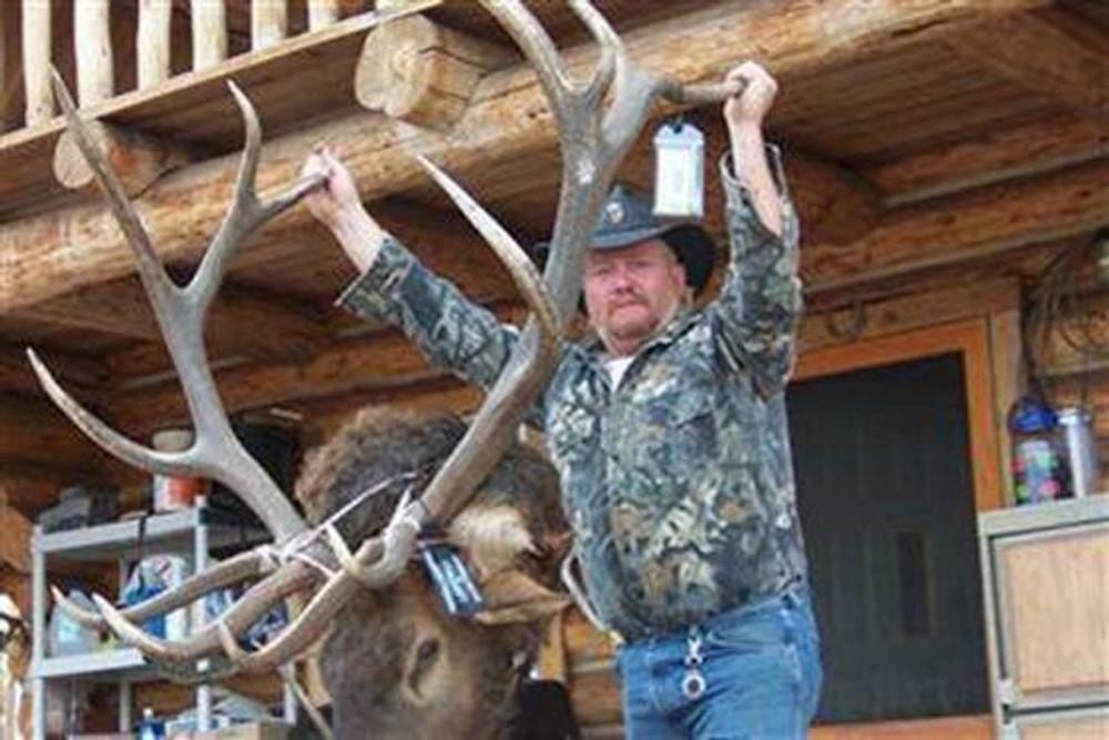 Heavy antlered 6x6 bull elk.