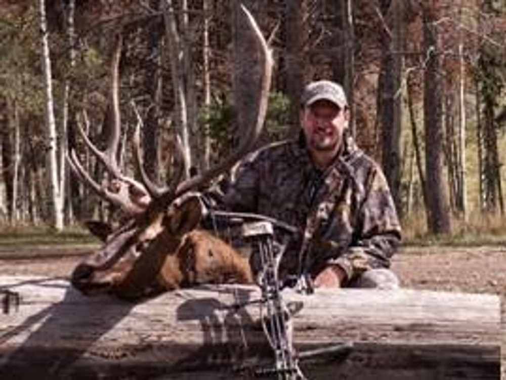 Archery season bull elk.