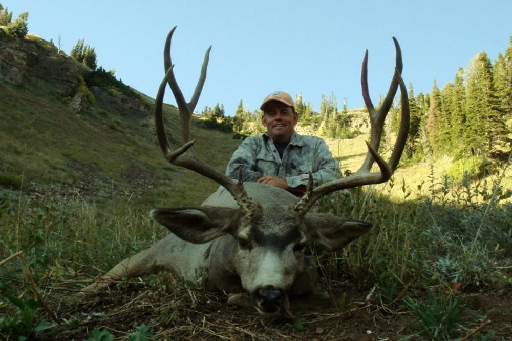 High country guided mule deer with cabin lodging.