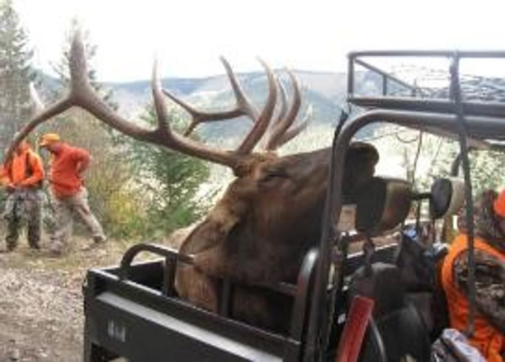 Big 5x5 on ATV drop camp hunt.