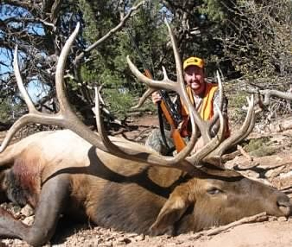 Heavy long tines on this bull elk trophy.