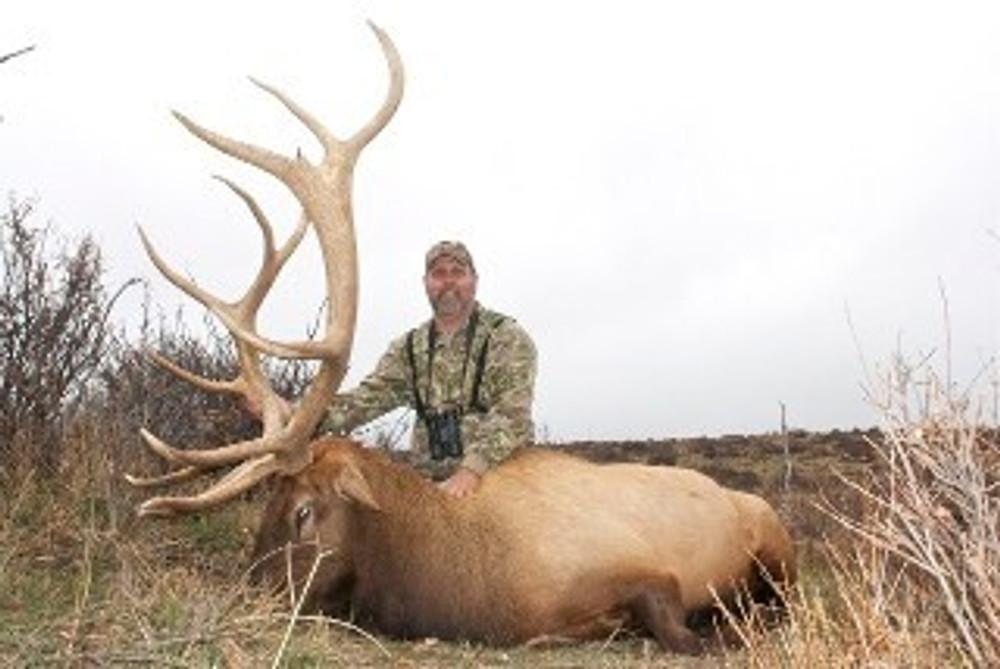 Bigger bull elk than I would take on public land.