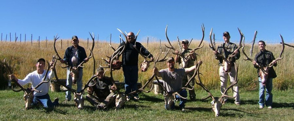 Everyone was successful at elk and deer hunts