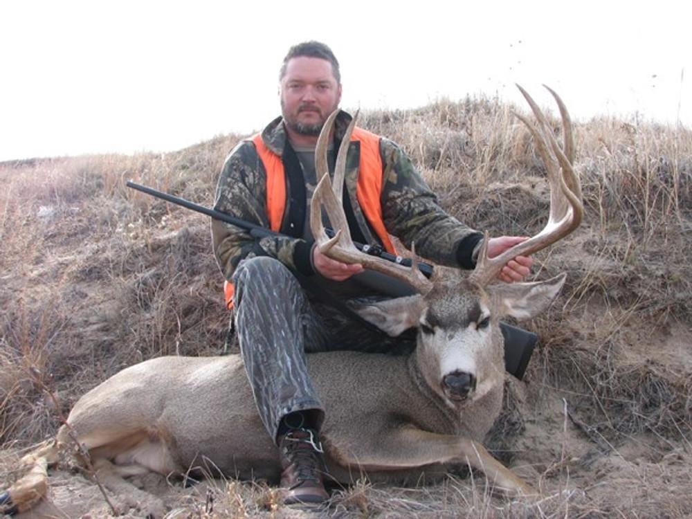 Heavy mule deer buck.