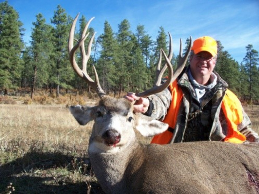 Rifle season DIY mule deer buck