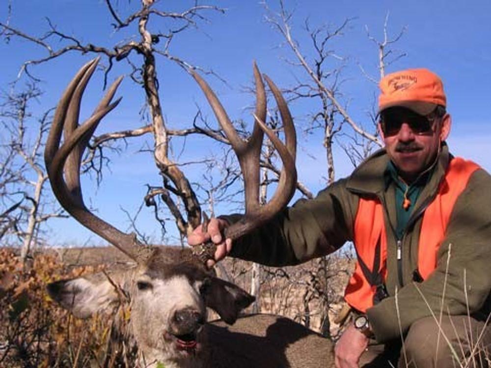 Thick antlered mule deer buck.