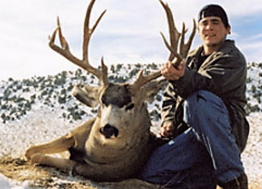 Wide antlered mule deer buck from a guided hunt.