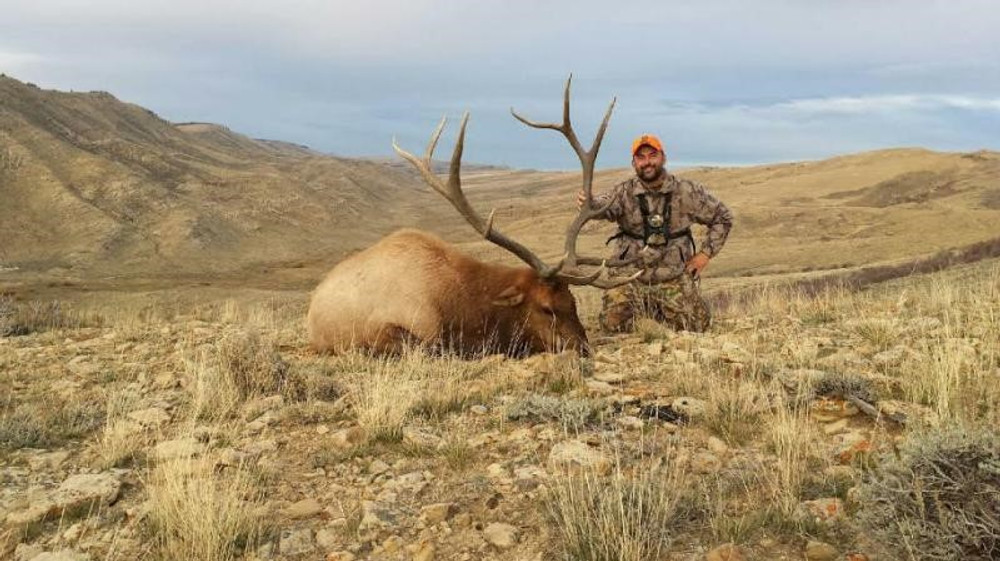 A long shot on this nice bull.