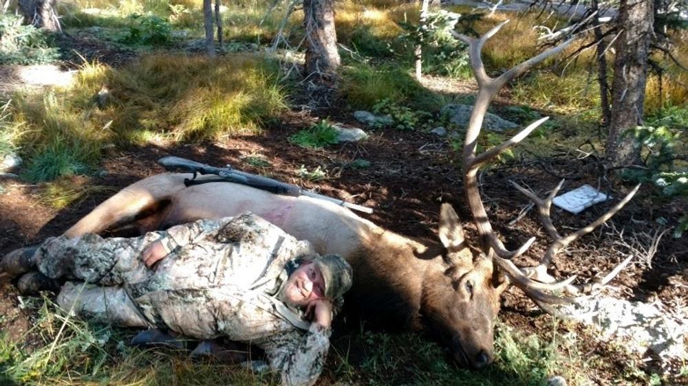 Elk down.