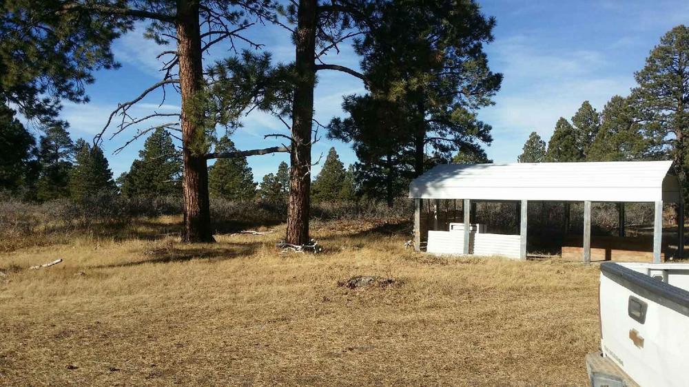 More area around cabin.
