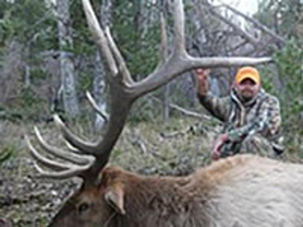 Hunt #9002 Guided Elk/Deer/Antelope Private/Public
