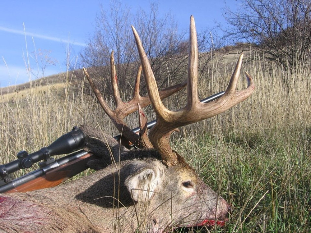 Hunt #7201 Guided Antelope/Mule Deer/Whitetail 20,000 Ac Private