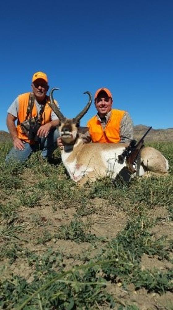 Plenty of antelope to hunt in Colorado.