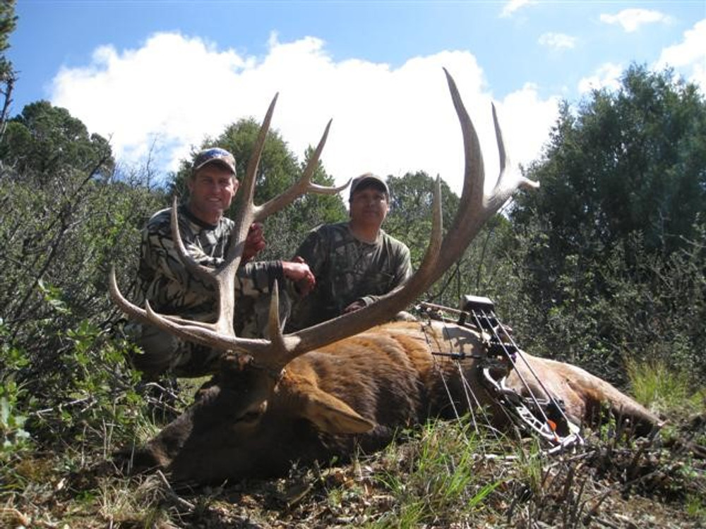 Guided archery 6x6 bull elk paid off.