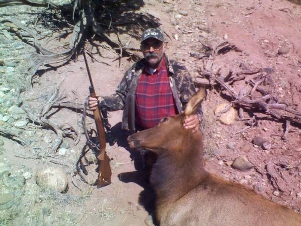 Private land guided cow elk hunt