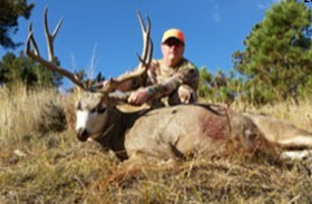 Successful drop camp mule deer hunt