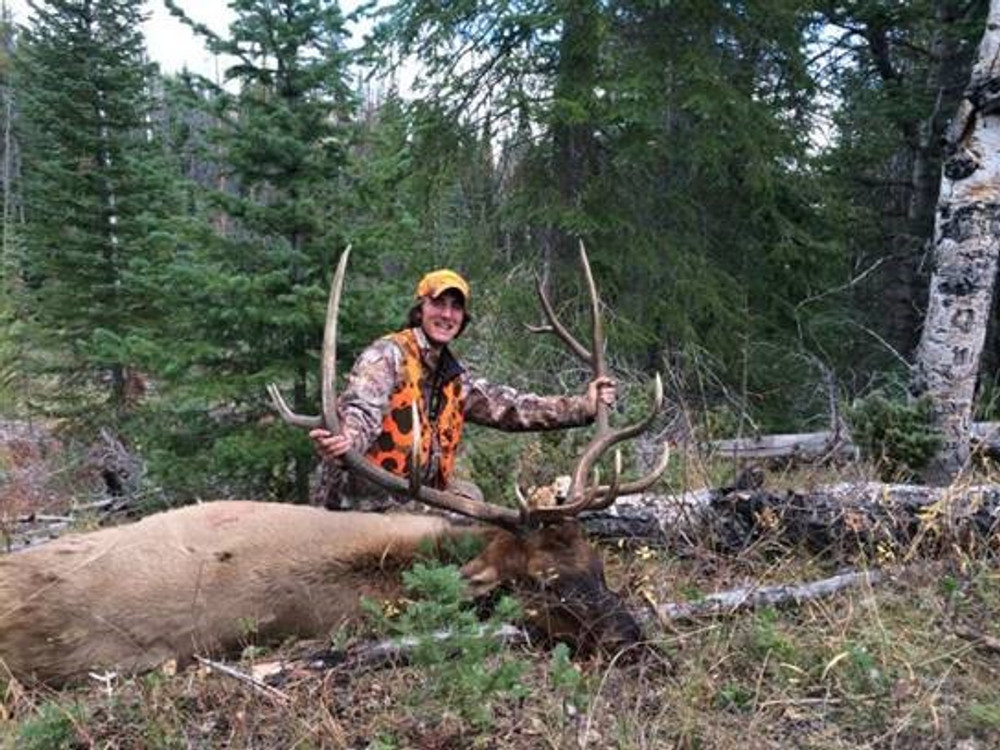 Any size Idaho elk is a trophy.