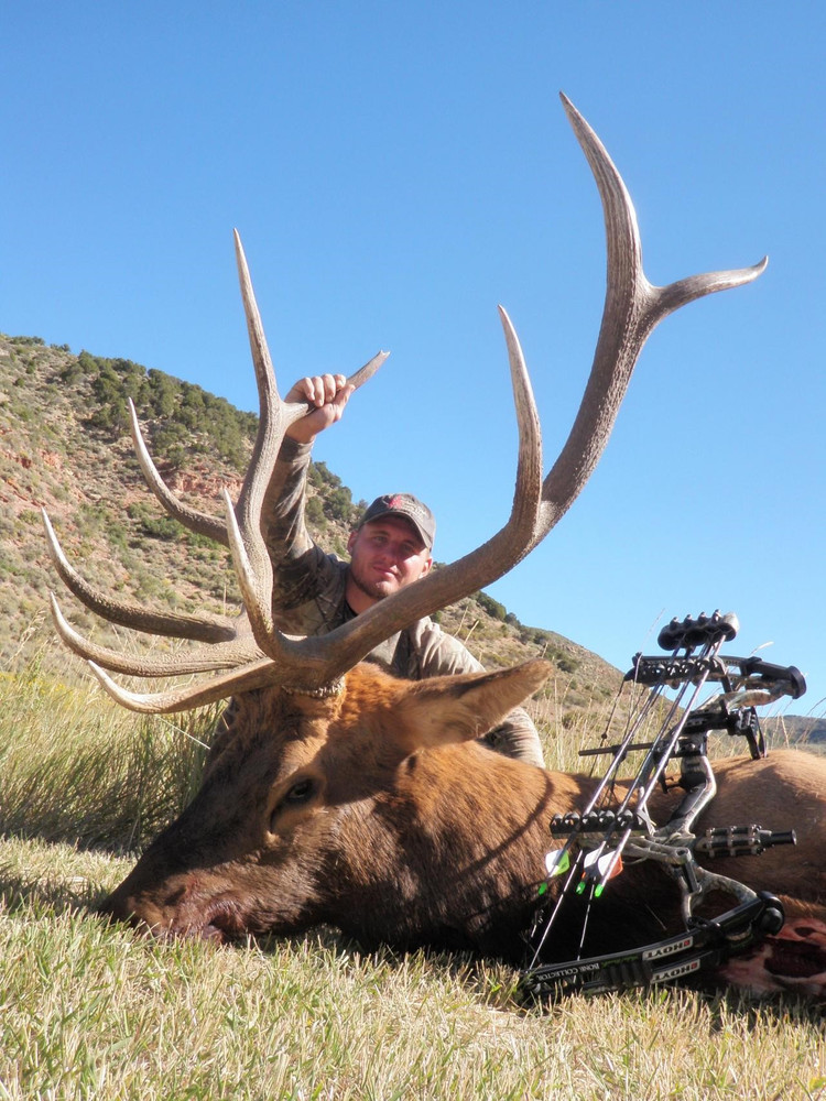 Another archery hunt  goes well.