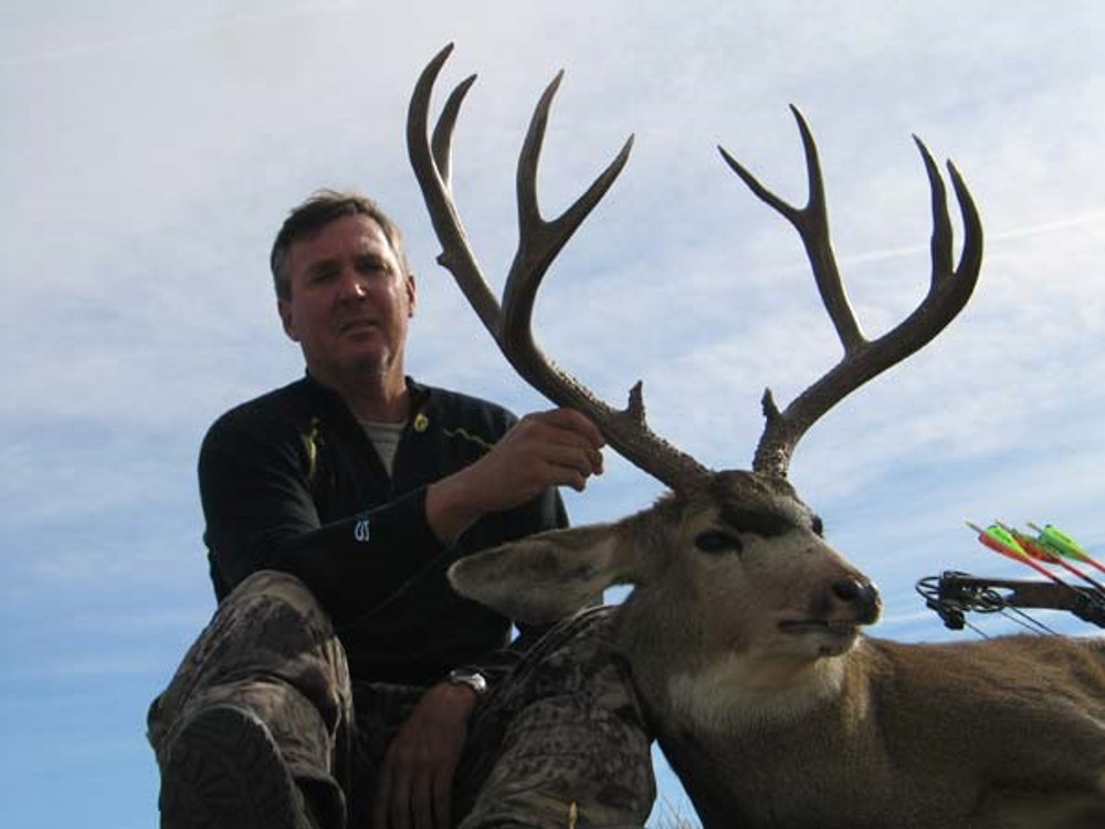 Typical 4x4 mule deer