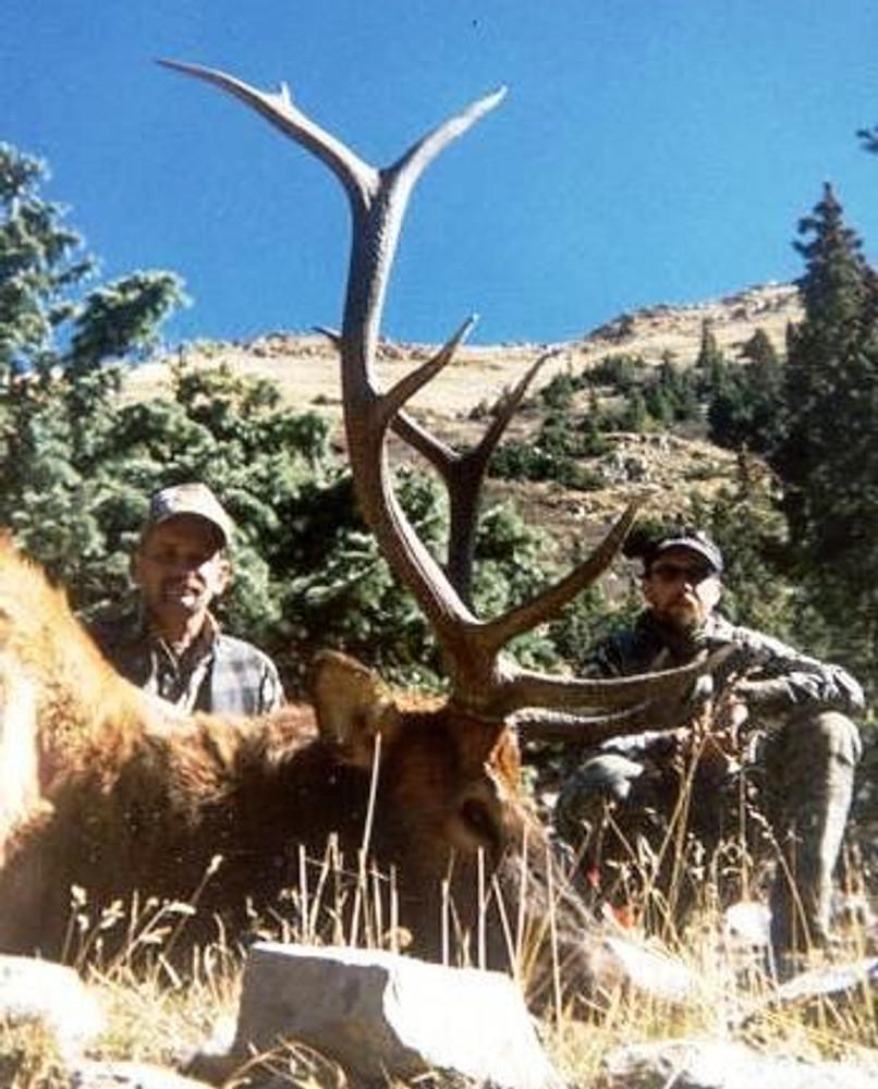 """Trophy elk up to 350""""+."""