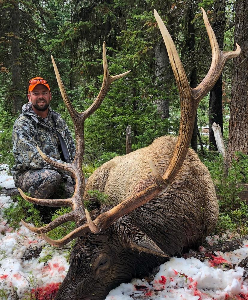 """Typical elk trophy 300"""" or better."""