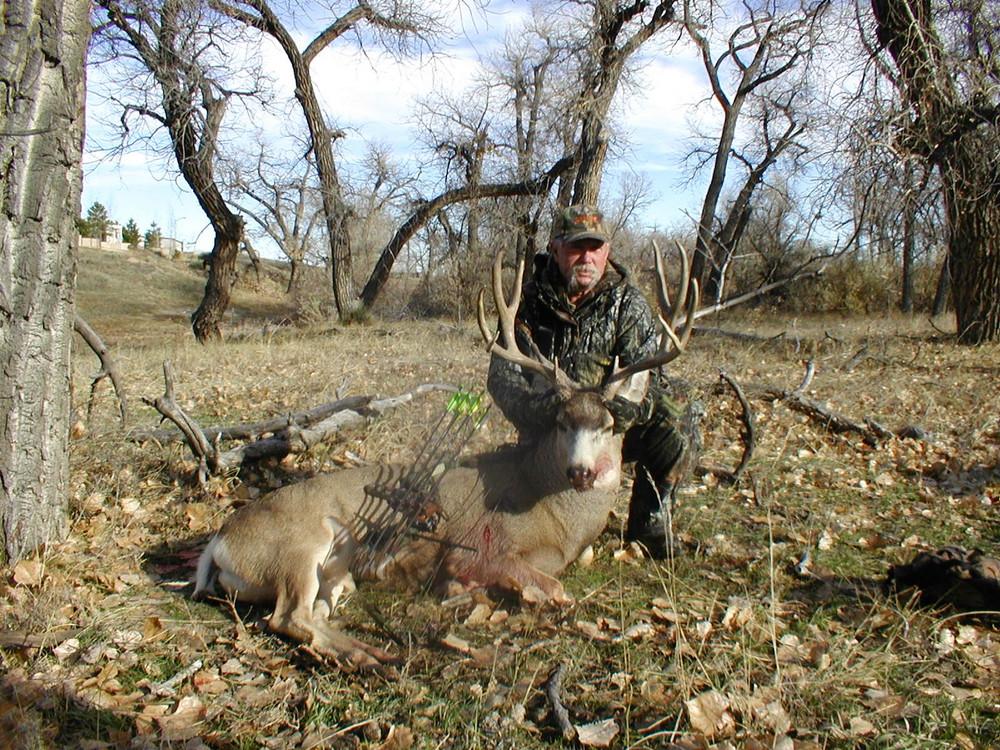 Mule deer trophy.