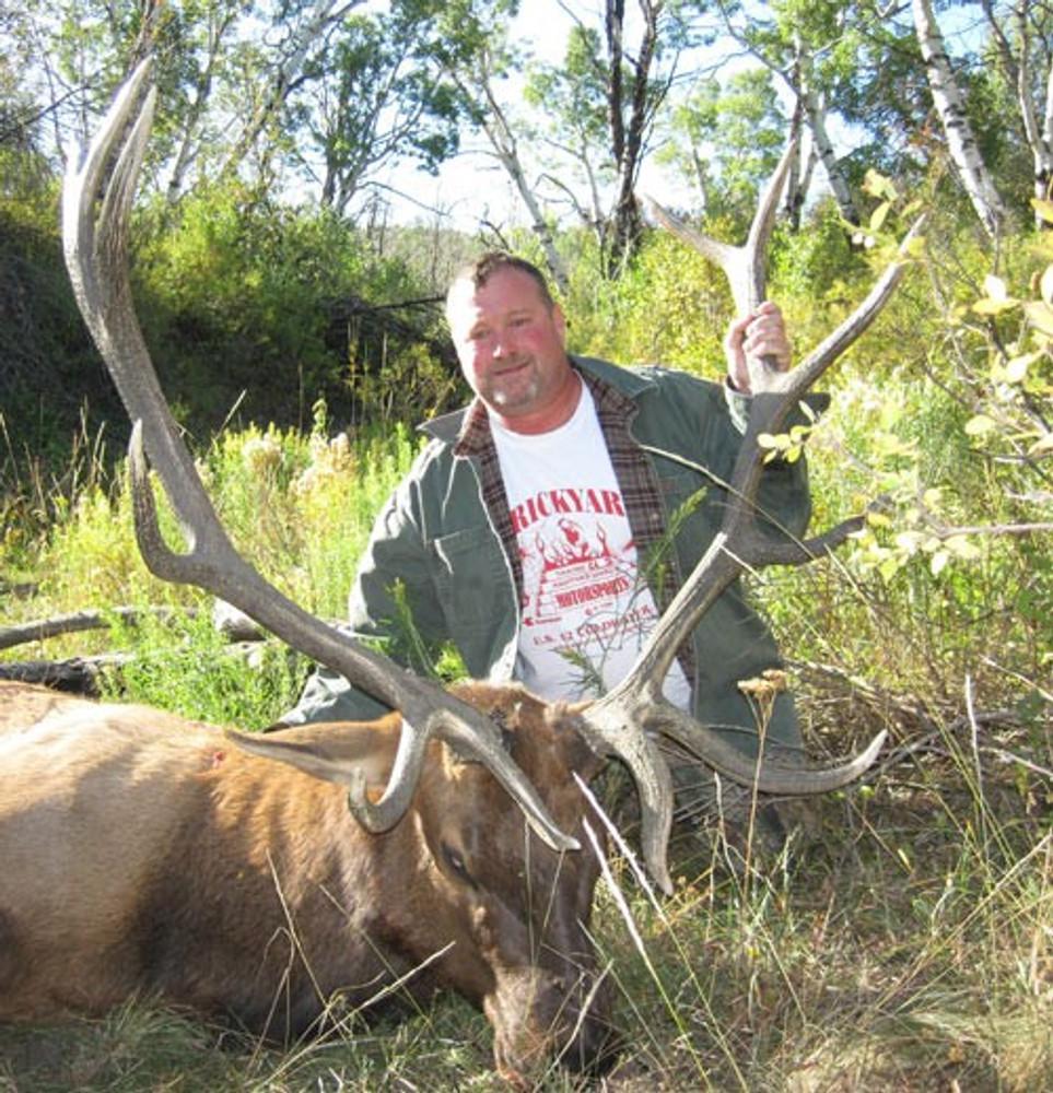 Nice big trophy elk.
