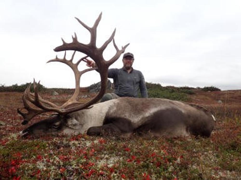 Trophy caribou hunt