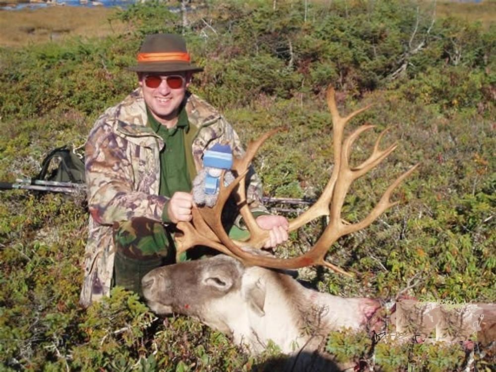 Hunt #1622 Guided Newfoundland Woodland Caribou