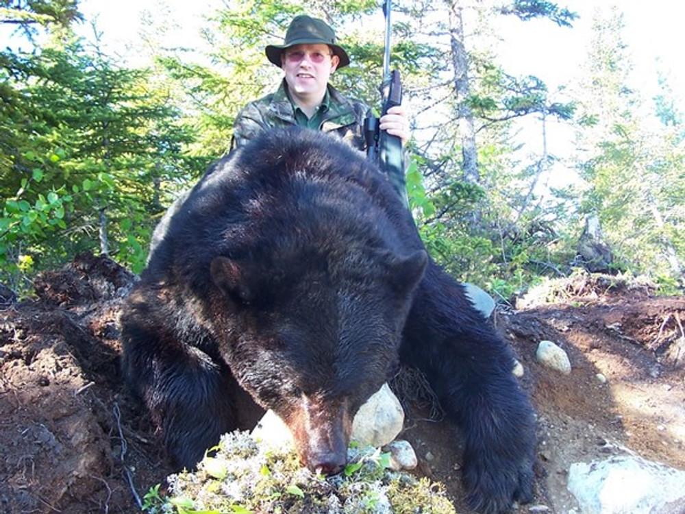 Newfoundland black bear hunt.