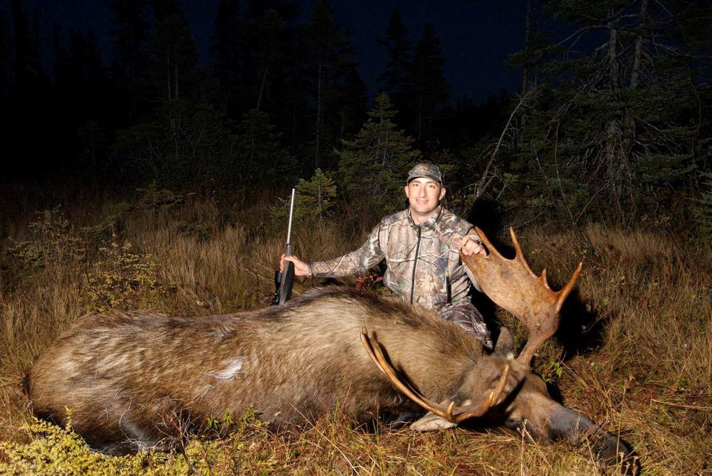 Hunting moose in Newfoundland Canada