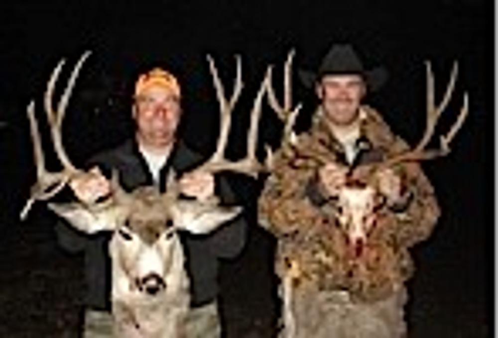 Double success on mule deer.