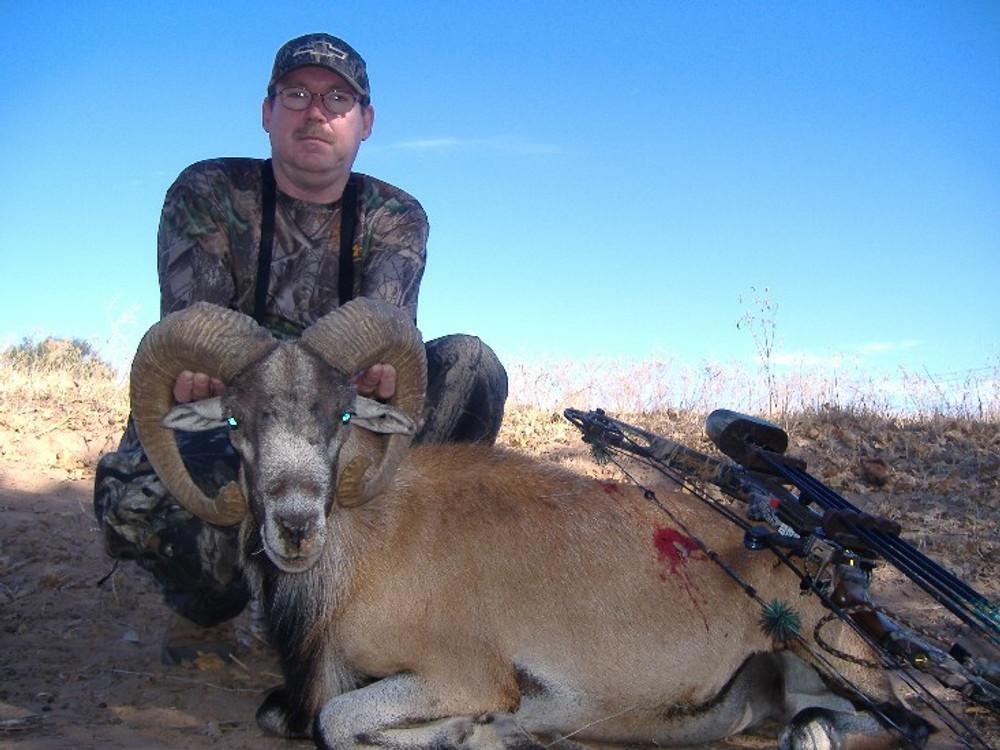 Hunt Aoudad in Texas.