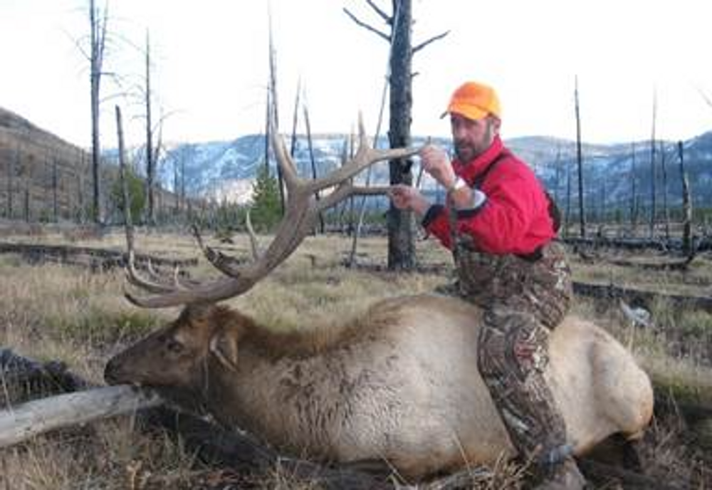 Flat country meado elk hunt.