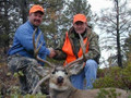 A mule deer trophy to be proud of.
