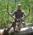 Elk down during a DIY hunt.