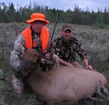 Cow elk hunters.