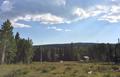 Elk country.