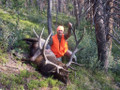 DIY rifle elk from a drop camp.