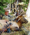DIY archery elk from a drop camp.